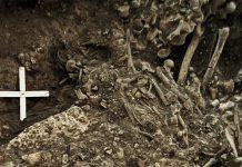 Hallan la evidencia más antigua de plaga, en huesos de mujer del Neolítico