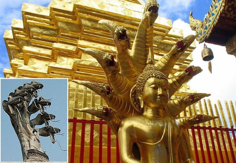 Buddha bajo 7 serpientes