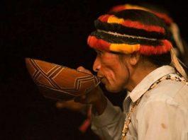 Registrarán por primera vez los conocimientos medicinales ancestrales de tribus del Amazonas