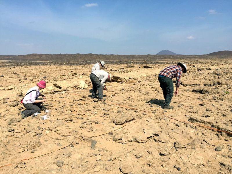 Este es el sitio donde se encontraron la mayoría de los artefactos de piedra en Wadi Dabsa. El sitio ahora es parte de un desierto estéril. Solía tener un clima más húmedo que admitía las plantas y la vida silvestre