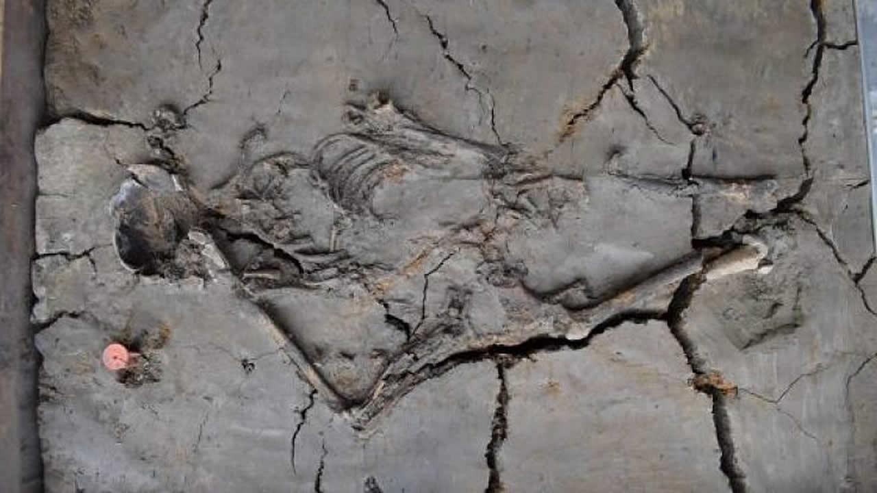 Hallan bebe de 6.000 años junto a su posible madre en Países Bajos