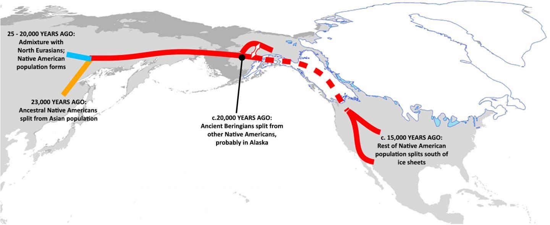 Gráfico del patrón de migración sugerido por nueva evidencia de ADN
