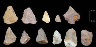 Antiguas herramientas de piedra halladas en India reescriben historia de los humanos saliendo de África