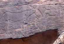 Arte rupestre revela que Arabia fue el hogar de animales no pensados anteriormente
