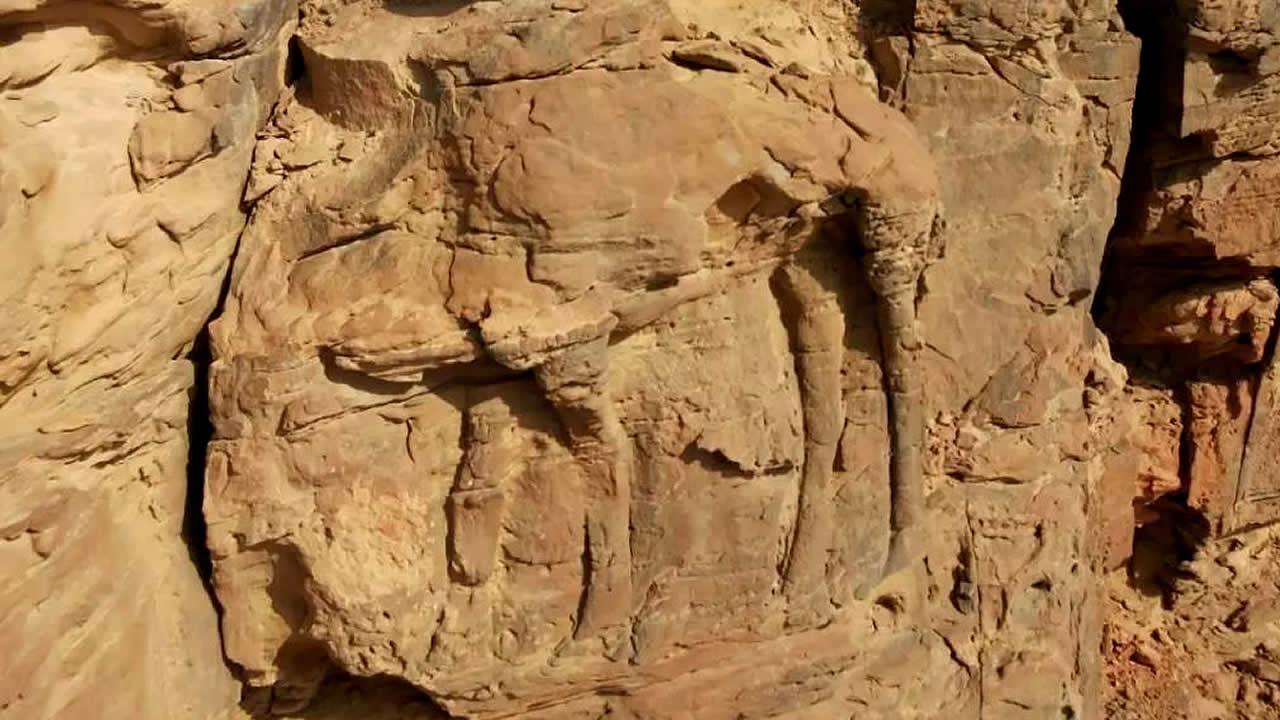 Hallan tallados en roca de 2.000 años en Arabia Saudita