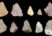 Hallan herramientas de piedra en India similares a las de África, cambiando teoría sobre antigua migración humana