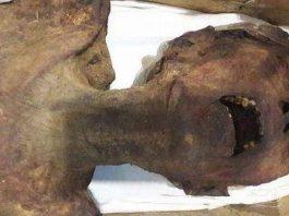 «Momia que grita» podría ser un príncipe ahorcado por conspirar para asesinar a su padre el faraón Ramsés III