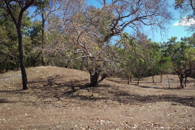 Estas formas de tierra han sido confirmadas como túmulos funerarios después de años de debate sobre sus orígenes y funciones