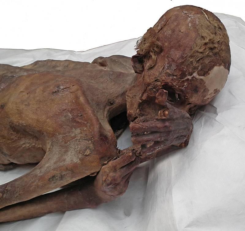 Gebelein man A, anteriormente conocido por el apodo de «Ginger» por su pelo rojo superviviente, aparece aquí