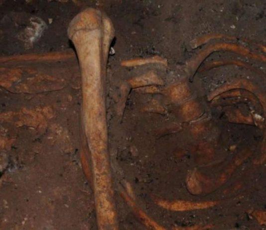 Investigadores secuencian el ADN humano más antiguo de África