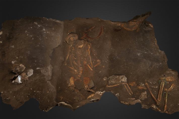 Dos de los tres miembros del entierro familiar de élite representados como arqueólogos los descubrieron