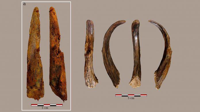 Hallan herramientas de madera de 90.000 años que no fueron hechas por humanos