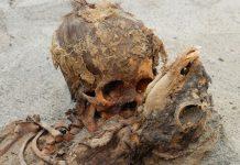 Hallan tumba de 140 niños sacrificados en el antiguo Perú