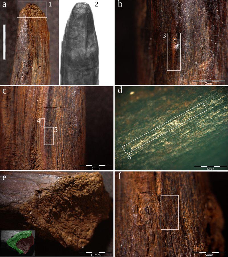 Diversas imágenes de las herramientas halladas