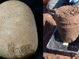 Hallan una urna de arcilla intacta con restos humanos de hace 4.000 años en Cornualles