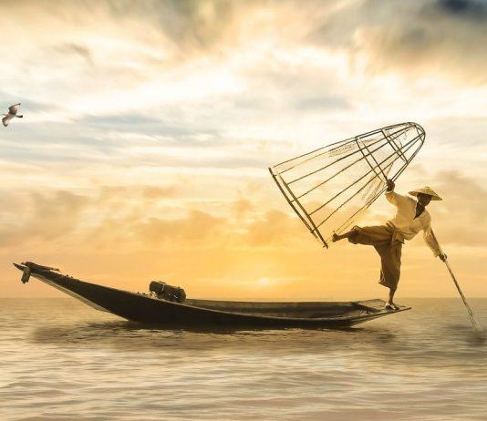 Japoneses empezaron a amar el pescado mucho antes de lo que se creía