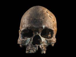 Restos de 8.000 años cuentan una historia sorprendente sobre el linaje del sudeste de Asia