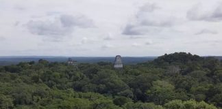 Hallan más de 60.000 características mayas antiguas