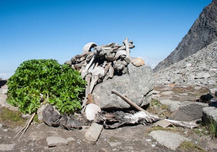 Restos esqueléticos encontrados en el lago Roopkund
