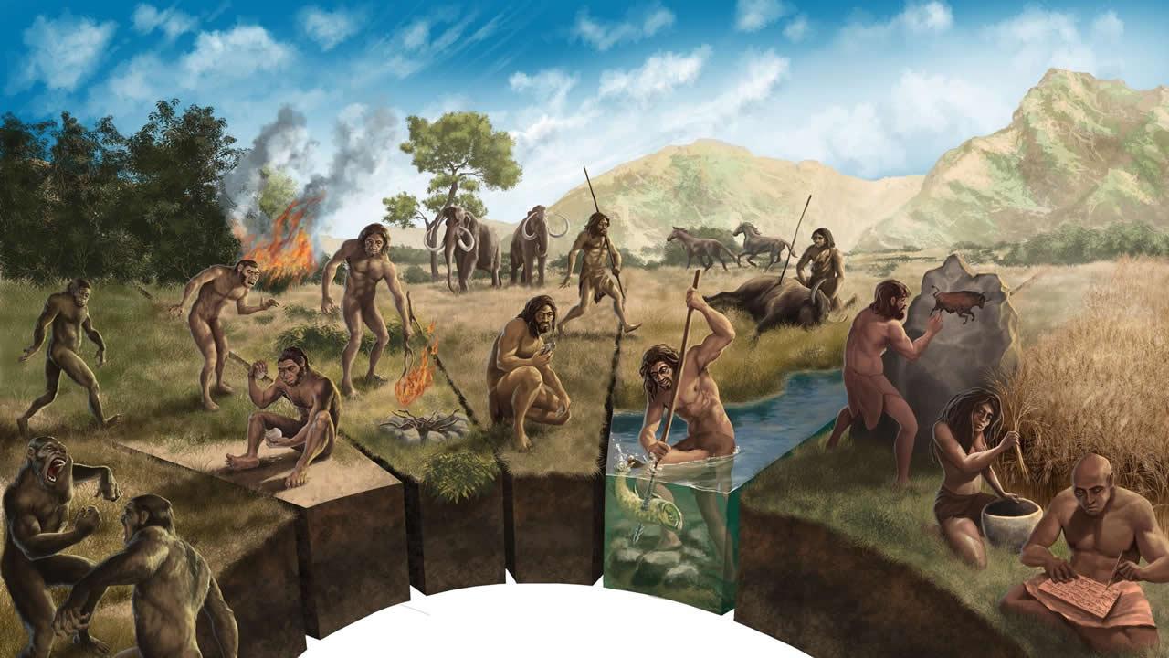 Los secretos de la evolución humana podrían estar ocultos en la selva tropical de África