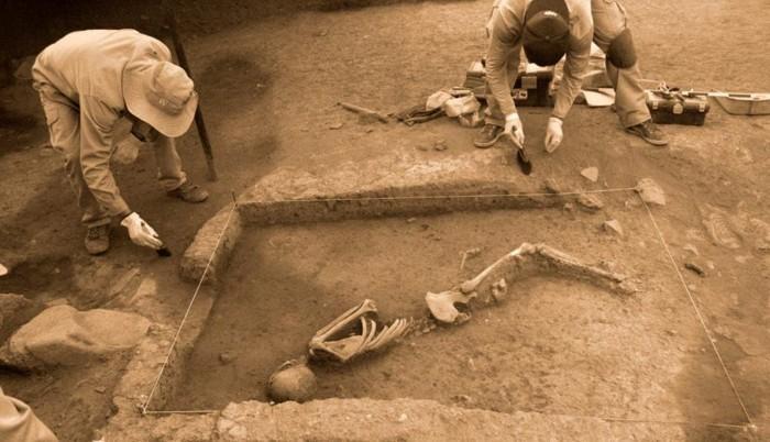 En las 5 unidades de excavación en área que se vienen ejecutando en Marcavalle, los investigadores de la Dirección Desconcentrada de Cultura de Cusco también hallaron el entierro de un camélido sudamericano