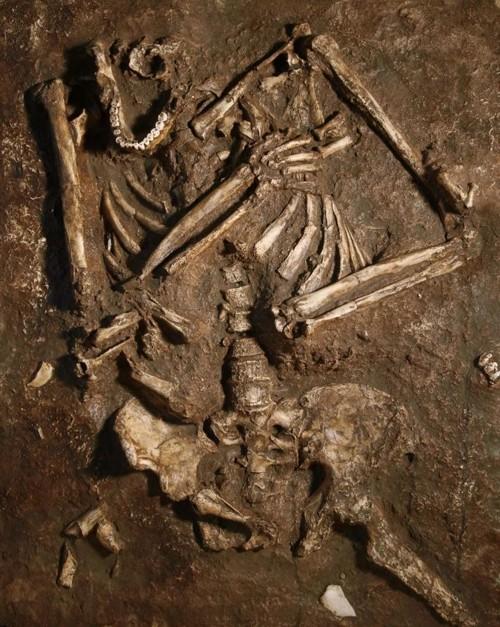 Fotografía del esqueleto de Kebara 2 tal como fue encontrado