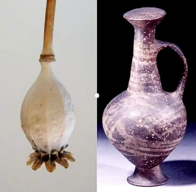El jarrón de anillo base se asemeja a la cabeza de semilla de una amapola de opio