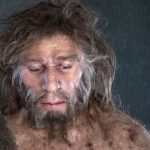 Dientes «similares a neandertales» de Italia revelan la temprana evolución humana en Europa