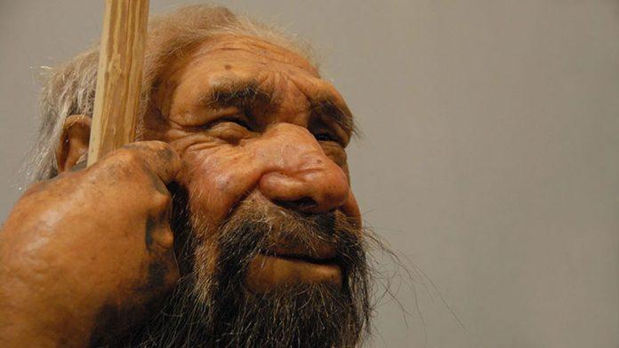 ¿Sexo entre nuestros antepasados y los neandertales salvó a la humanidad?