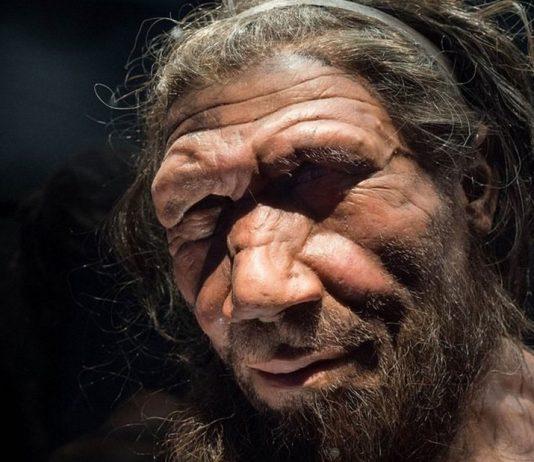 ¿Acompañamos a la neandertales a su extinción?