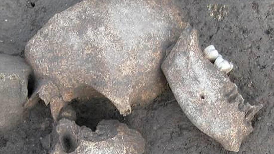 Antiguos galos hicieron cosas horripilantes a las cabezas de sus enemigos, según confirma un estudio