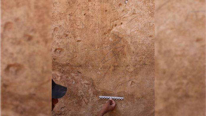 Hallan grabados de barcos de la era bíblica en desierto de Israel