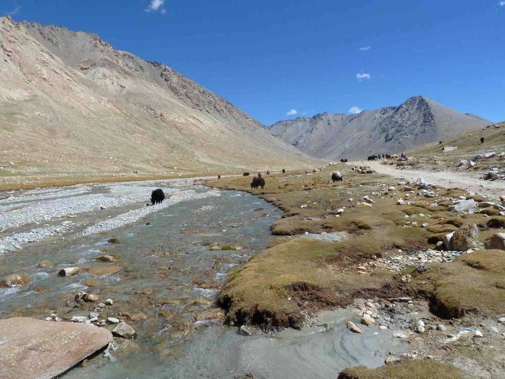 Vivir en el Tíbet no ofrece una gran cantidad de opciones de alimentos o oxígeno
