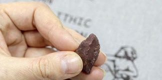 Hallan un lápiz de 50.000 años en Siberia