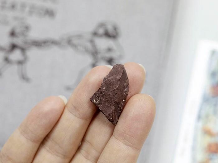 El crayón se utilizó para hacer marcas de color marrón rojizo