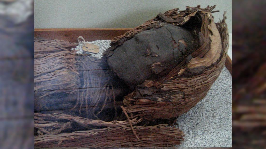 Misterios de las momias Chinchorro, más cerca de resolverse