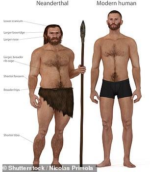 Un neandertal y un homo sapiens