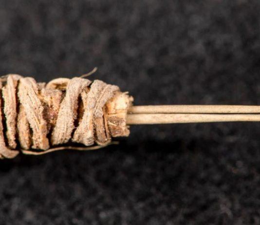 Esta herramienta es una «pistola» de tatuaje de 2.000 años de antigüedad