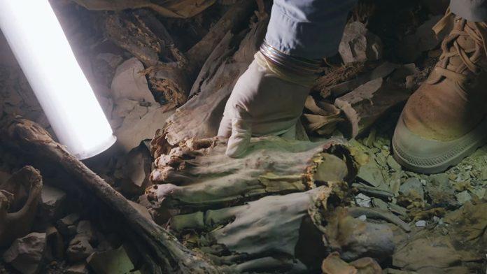 Hallan 60 momias egipcias enterradas juntas y que sufrieron muertes horrendas