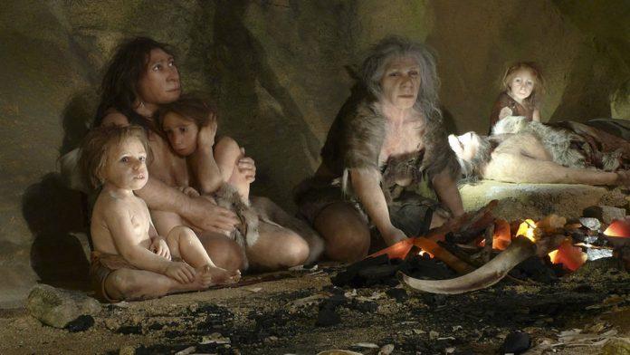 Los neandertales se vieron obligados a comerse unos a otros, debido al cambio climático
