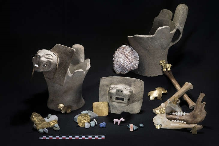 El equipo encontró ofrendas rituales que consistían en quemadores de incienso felino de cerámica y llamas juveniles sacrificadas, así como adornos de oro, conchas y piedras