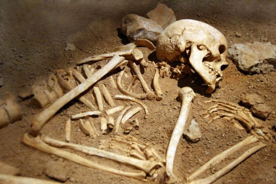 Hace un millón de años, nuestros ancestros antiguos se dedicaban a cazar y comerse unos a otros porque el canibalismo era una estrategia de supervivencia fácilmente disponible y altamente rentable, según los científicos