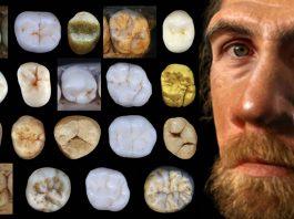 Neandertales y humanos modernos divergieron hace al menos 800.000 años, antes de lo que se creía