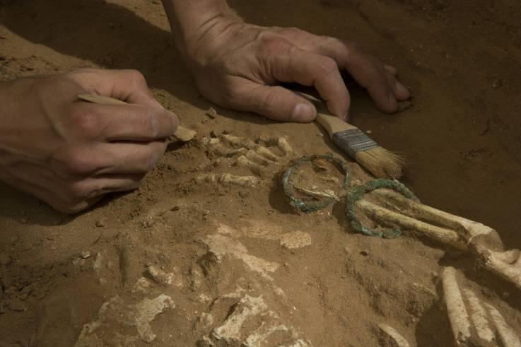 Uno de los esqueletos que están siendo excavados