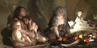 Nuestros ancestros se cruzaron con al menos cuatro poblaciones humanas arcaicas